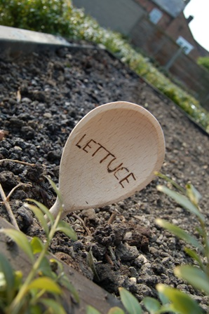 Spoon plant labels2