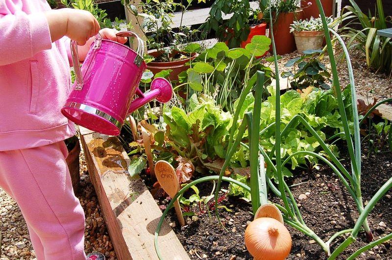 Pre-school gardening 001