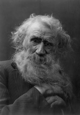 Oldmansbeard