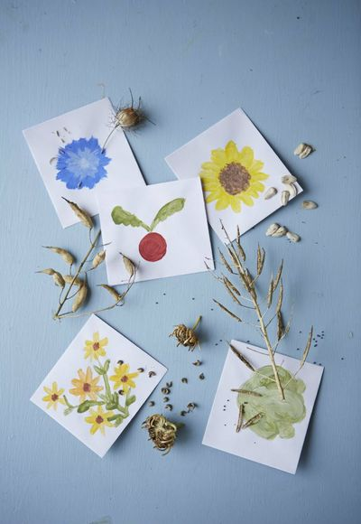 Collect flower seeds